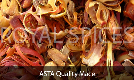 Indonesia Mace Spice | Mace Spice Crop 2016 | Supplier