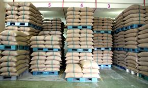 Indonesia Mace Stock